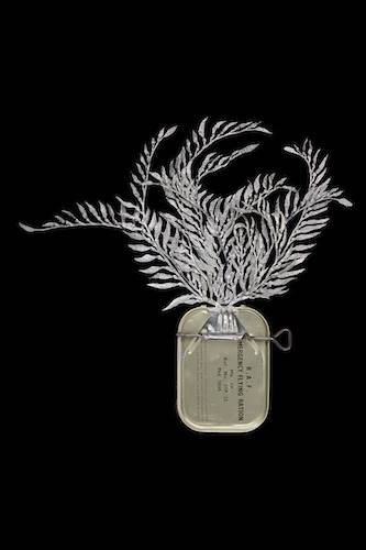 Fiona Hall, Holdfast (Macrocystis angustifolia; giant kelp)
