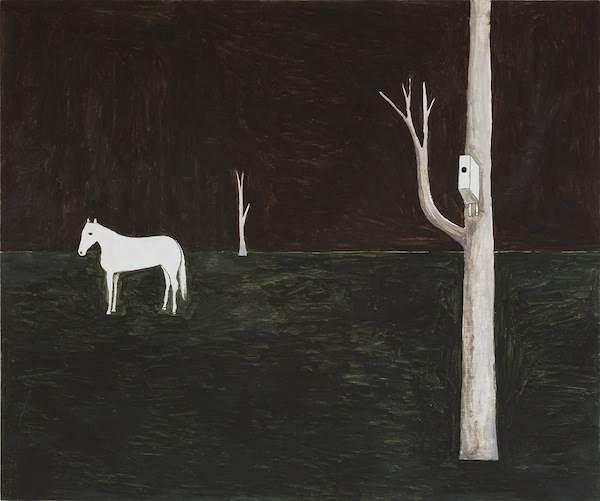 Noel McKenna, White horse