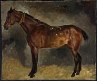 Ferdinand Victor Eugene Delacroix, A Brown Horse, Facing Left