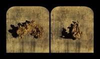 Bohnchang Koo, Gold Nuggets, Clunes