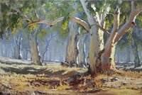 Kathy Ellem, Grazing in Flinders