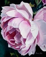 Roseanne Steele, Pink Rose