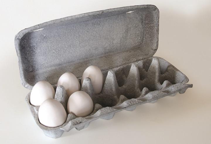 Keith MacDonald, Egg Carton