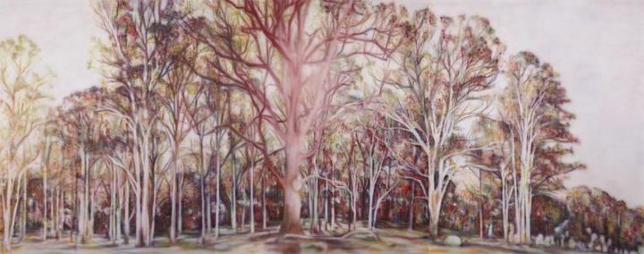 Fiona Lowry, a rain of falling cinders
