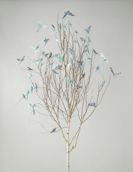 Leila Jeffreys, Blue Blossoms 2