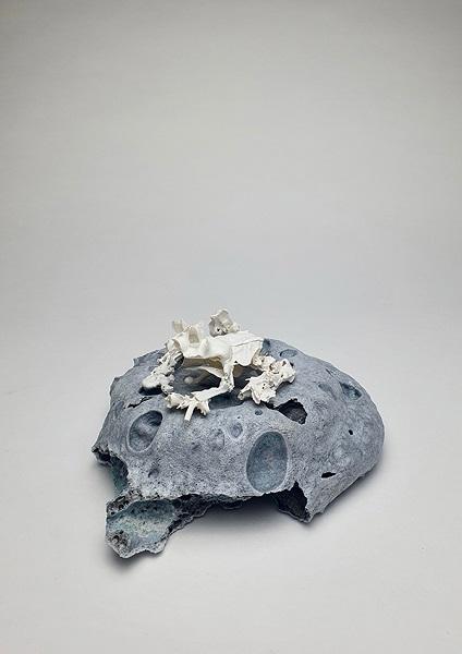 Mahala Hill, Armoured Mist Frog