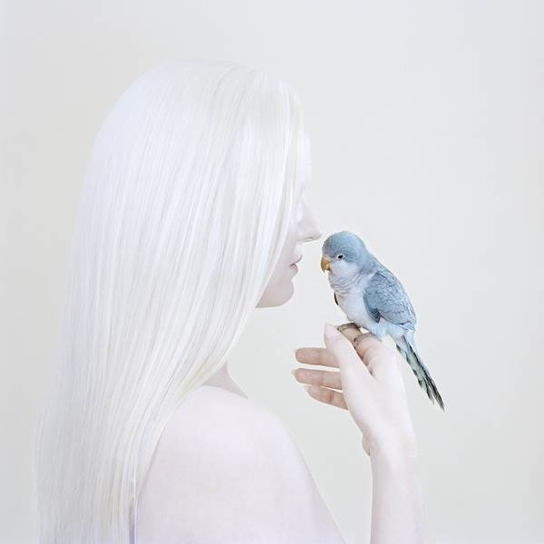 Petrina Hicks, Birds Eye