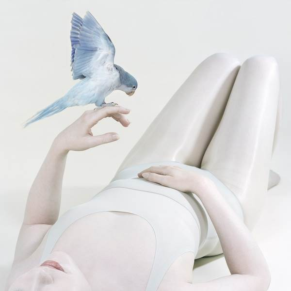 Petrina Hicks, Bluebird