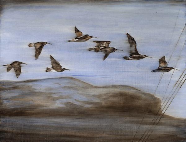 Deb Mostert, Aden Flight - Whimbrels