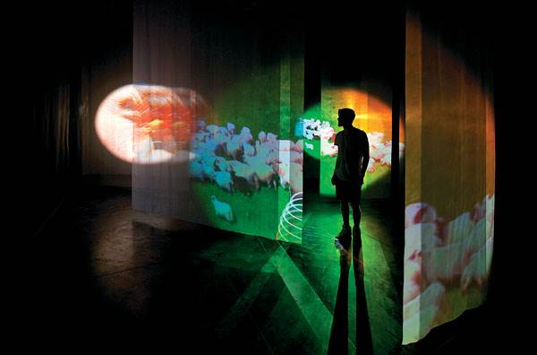 Pipilotti Rist, 'I Packed the Postcard in My Suitcase'
